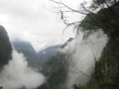 Machu fog2