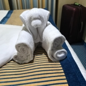 Just another towel animal